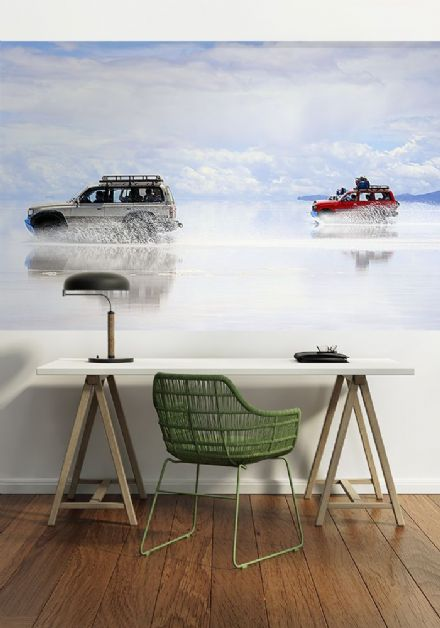 Racing cars - adventure wall murals - S